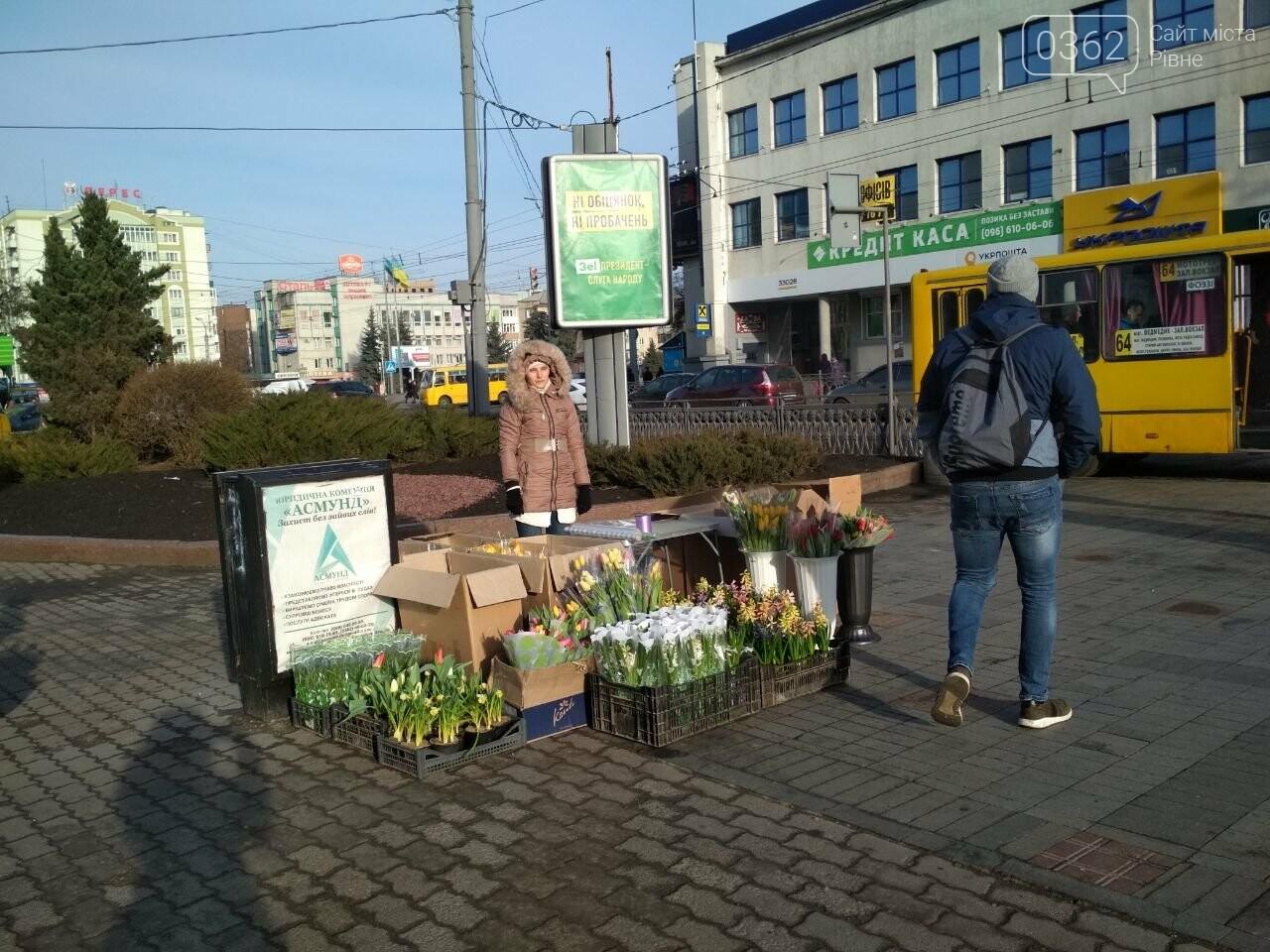 У центрі Рівного розгорнувся квітковий базарчик (ФОТОФАКТ) , фото-1