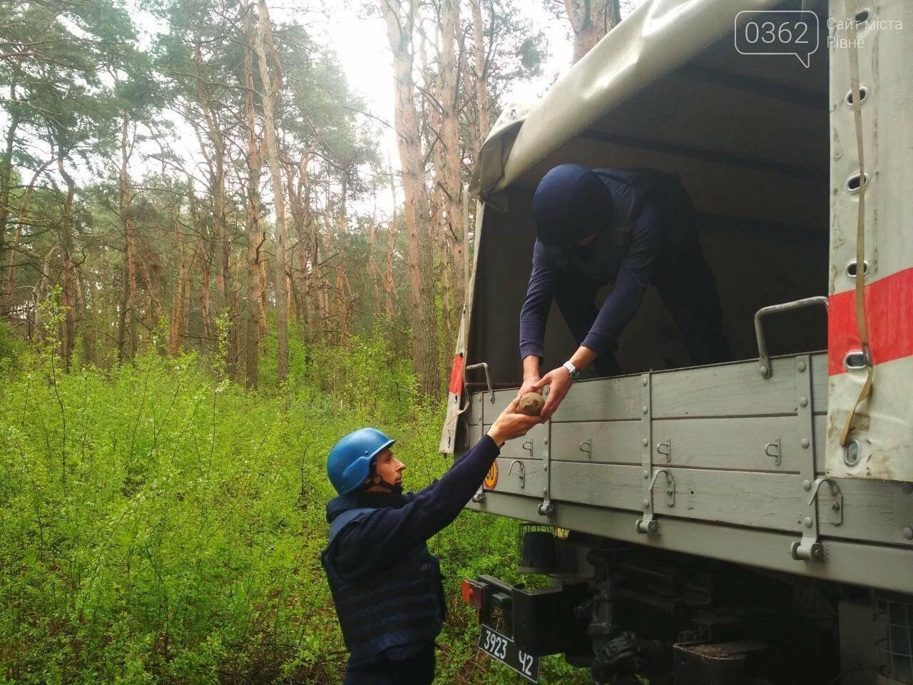У двох районах на Рівненщині піротехніки знищили вибухівку (ФОТО), фото-3