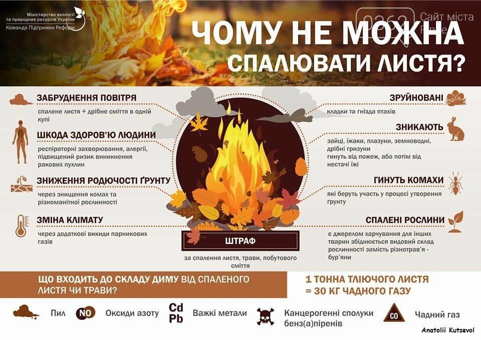 Чому не можна спалювати листя: поради рівнянам, фото-1
