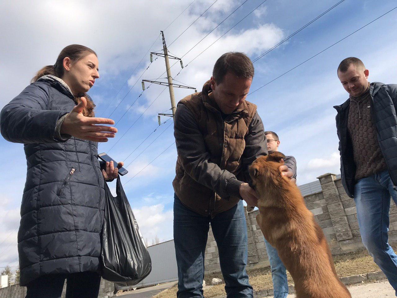 Дерев'янко у Рівному представив свою програму: 50% жінок у владі, 10% розмитнення авто та захист тварин (ФОТО, ВІДЕО), фото-4