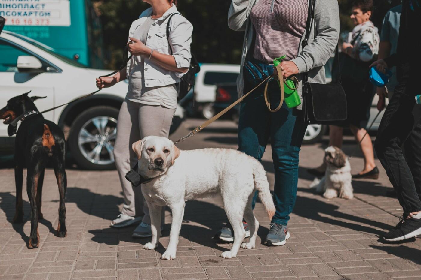 Разом з дітьми та домашніми улюбленцями: у Рівному пройшов Всеукраїнський марш за тварин (ФОТО), фото-11