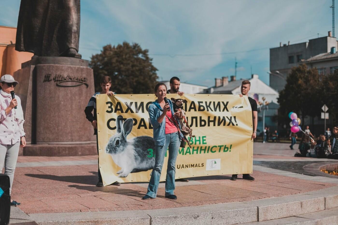 Разом з дітьми та домашніми улюбленцями: у Рівному пройшов Всеукраїнський марш за тварин (ФОТО), фото-6