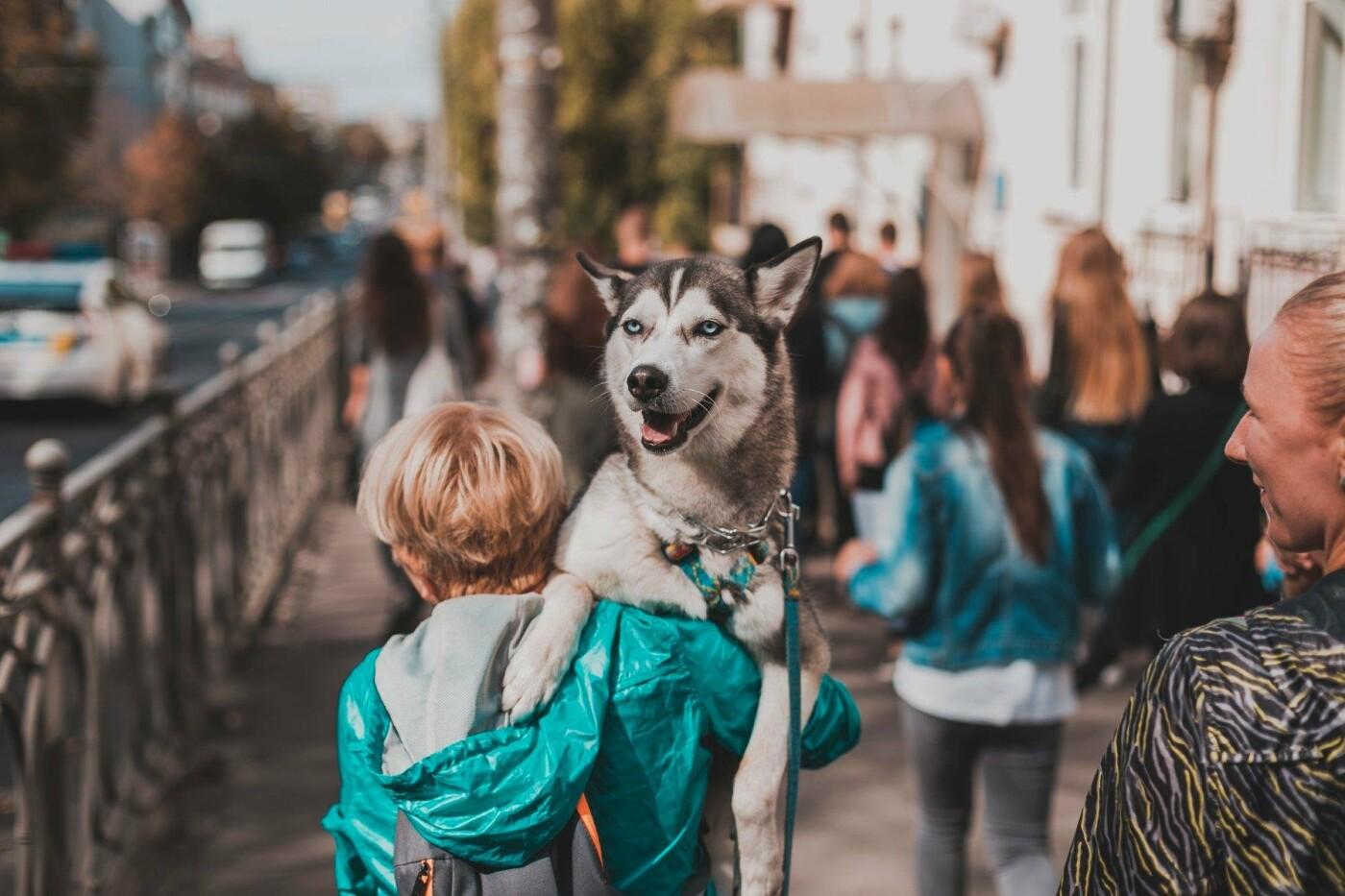 Разом з дітьми та домашніми улюбленцями: у Рівному пройшов Всеукраїнський марш за тварин (ФОТО), фото-4