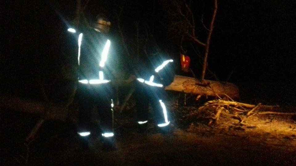 На Рівненщині рятувальники звільняли дорогу від поваленого дерева (ФОТО), фото-1