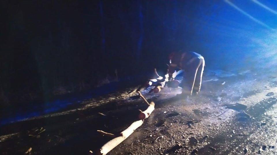 На Рівненщині рятувальники звільняли дорогу від поваленого дерева (ФОТО), фото-2