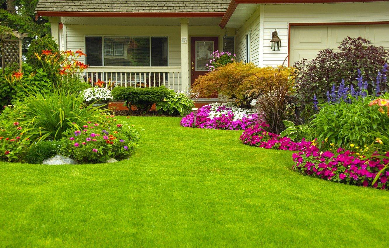 """Американські системи автополиву пропонує """"Сервіс Дім"""": Ваш газон буде зеленішим ніж у сусіда, фото-1"""