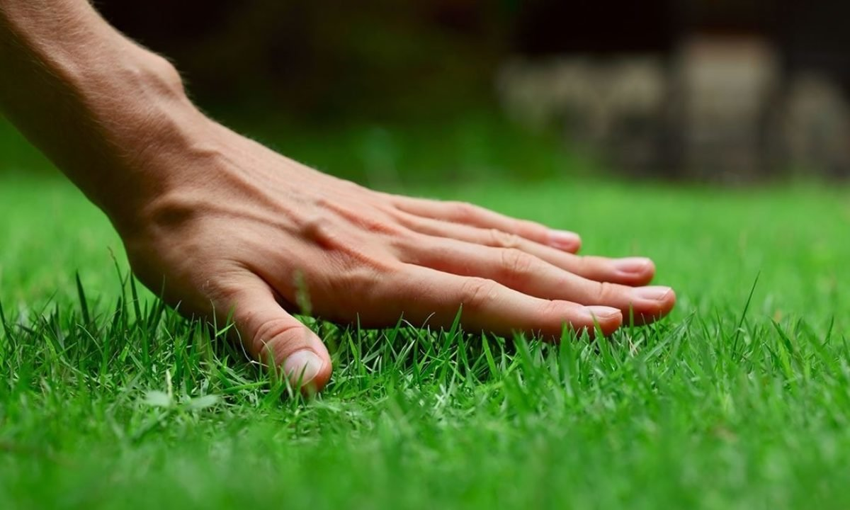 """Американські системи автополиву пропонує """"Сервіс Дім"""": Ваш газон буде зеленішим ніж у сусіда, фото-5"""