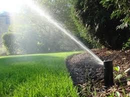 """Американські системи автополиву пропонує """"Сервіс Дім"""": Ваш газон буде зеленішим ніж у сусіда, фото-2"""