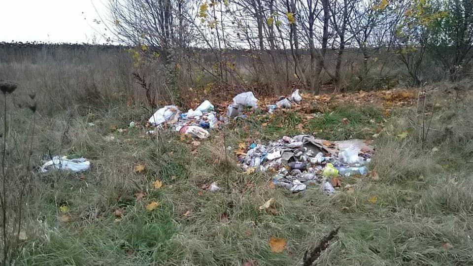Поблизу Рівного виявили несанкціоноване сміттєзвалище (ФОТО), фото-1