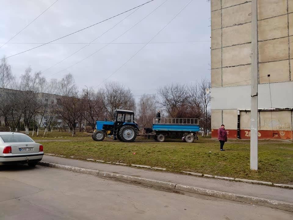 Комунальники взялися за облагородження вулиць Квасилова (ФОТО), фото-3