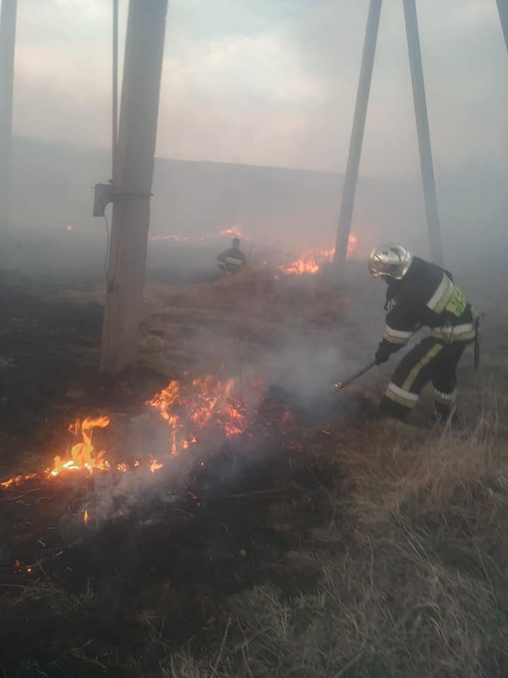 У трьох громадах Рівненської області минулої доби рятувальники боролися з пожежою на полях (ФОТО), фото-1