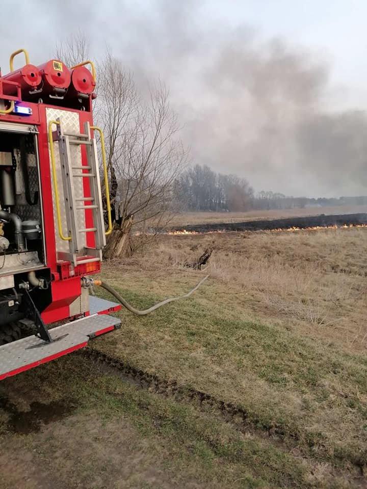 У трьох громадах Рівненської області минулої доби рятувальники боролися з пожежою на полях (ФОТО), фото-3