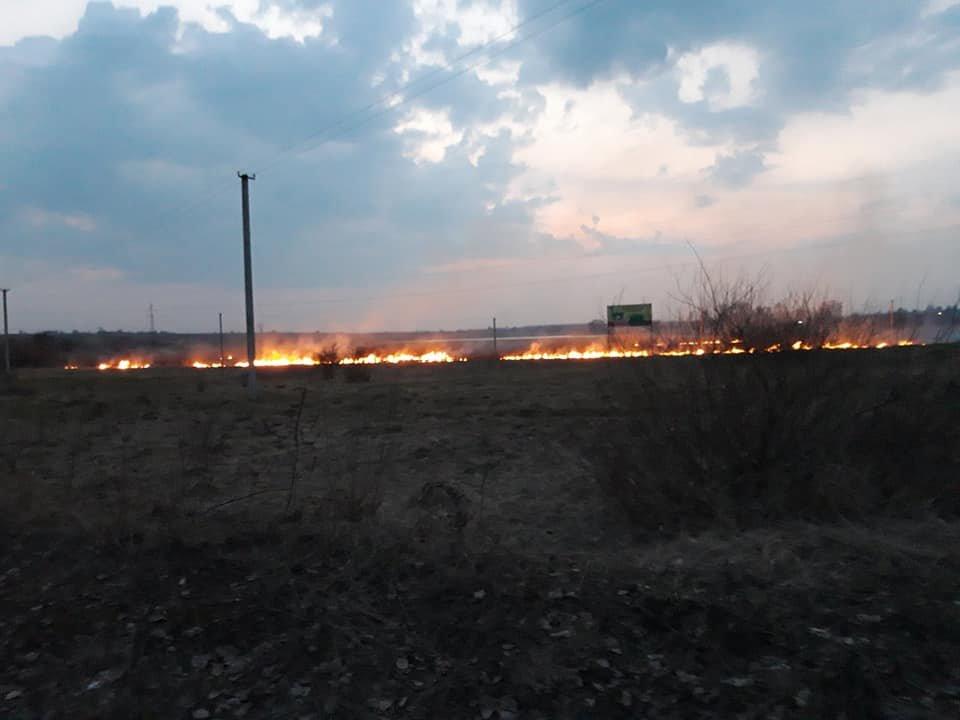 У трьох громадах Рівненської області минулої доби рятувальники боролися з пожежою на полях (ФОТО), фото-2