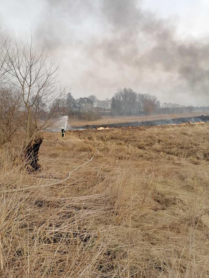 У трьох громадах Рівненської області минулої доби рятувальники боролися з пожежою на полях (ФОТО), фото-4