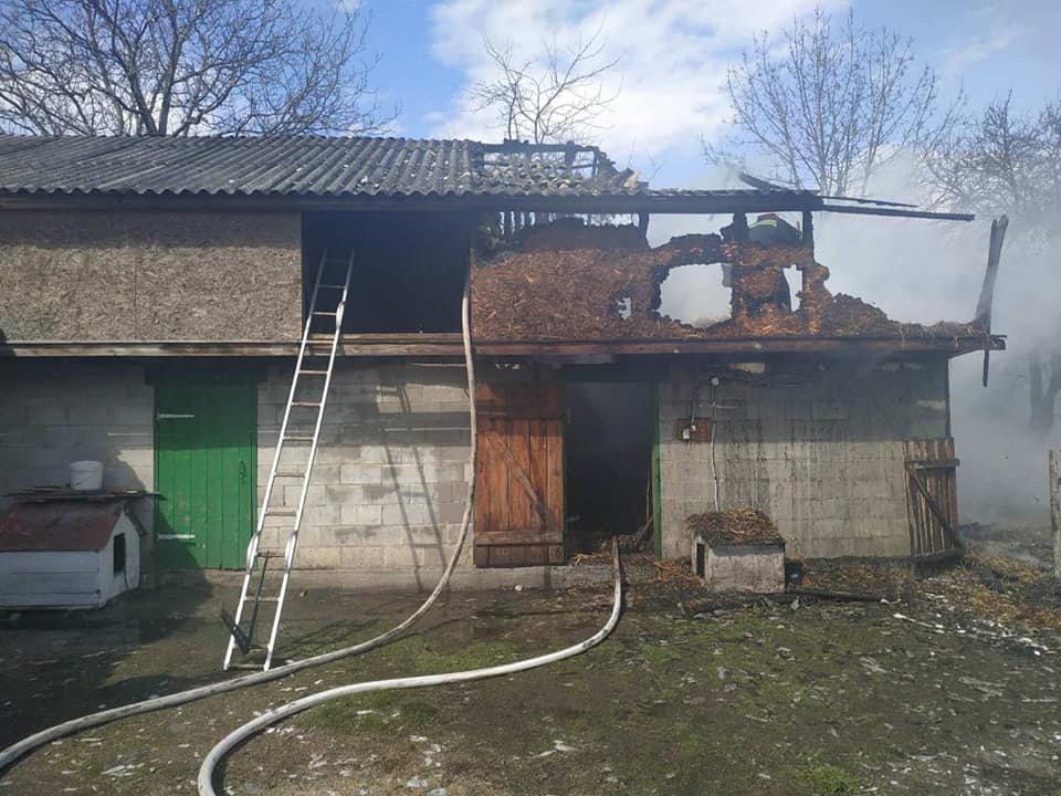 На Кореччині в одному з сіл згоріла стріха сараю (ФОТО) , фото-3