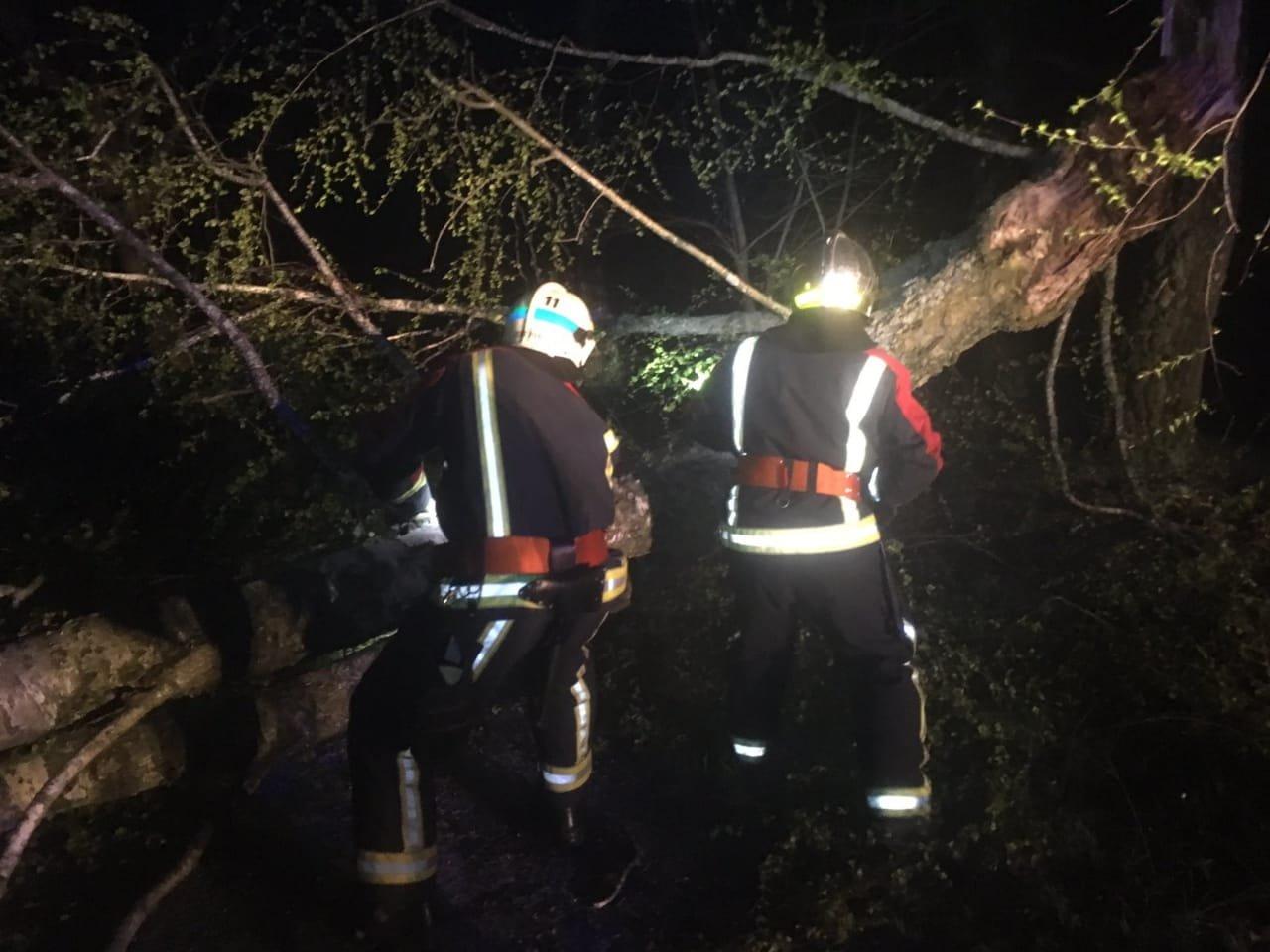 Вечірня негода на Великдень змушувала рятувальників тричі прибирати повалені дерева, фото-7
