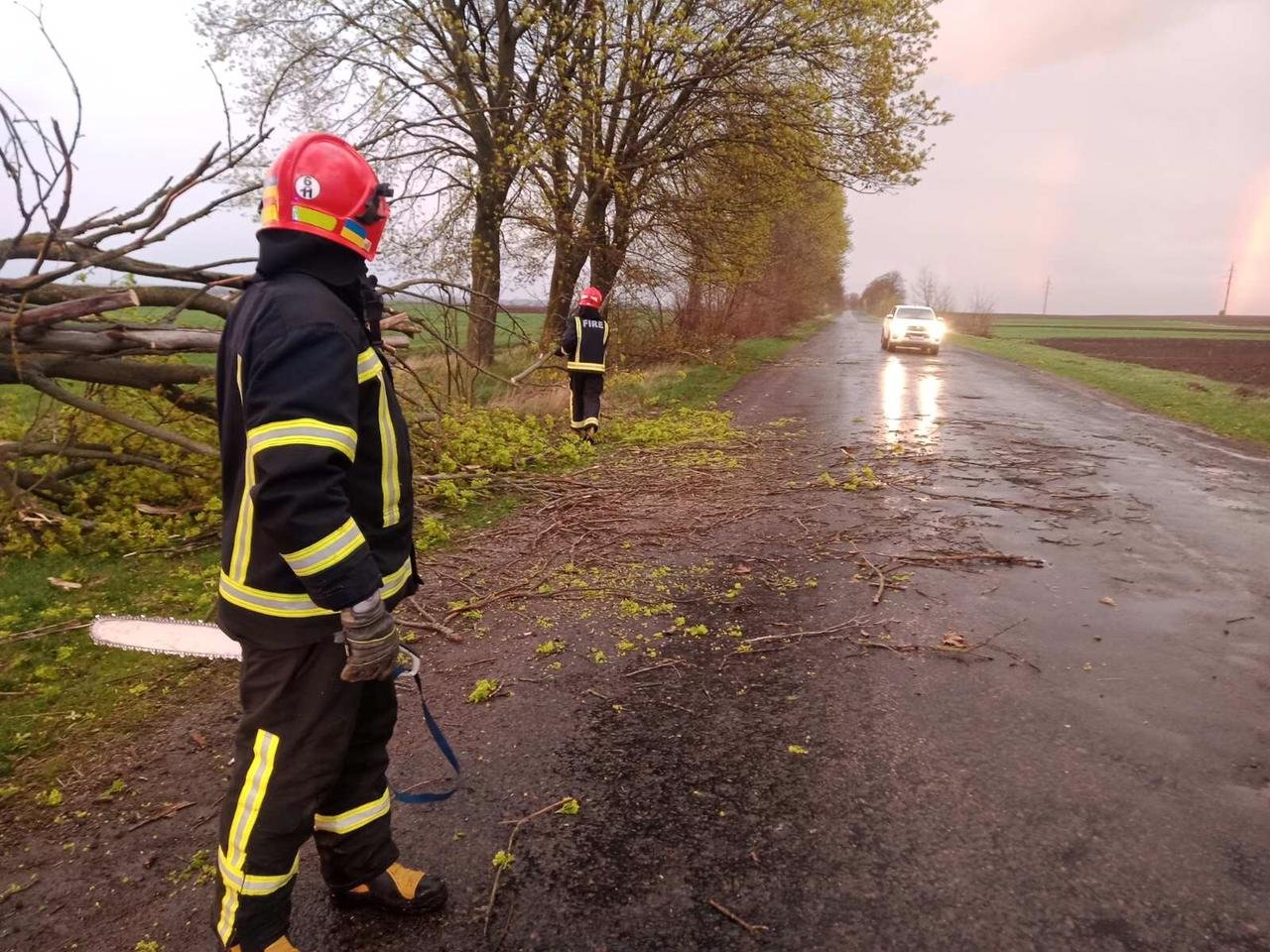 Вечірня негода на Великдень змушувала рятувальників тричі прибирати повалені дерева, фото-2