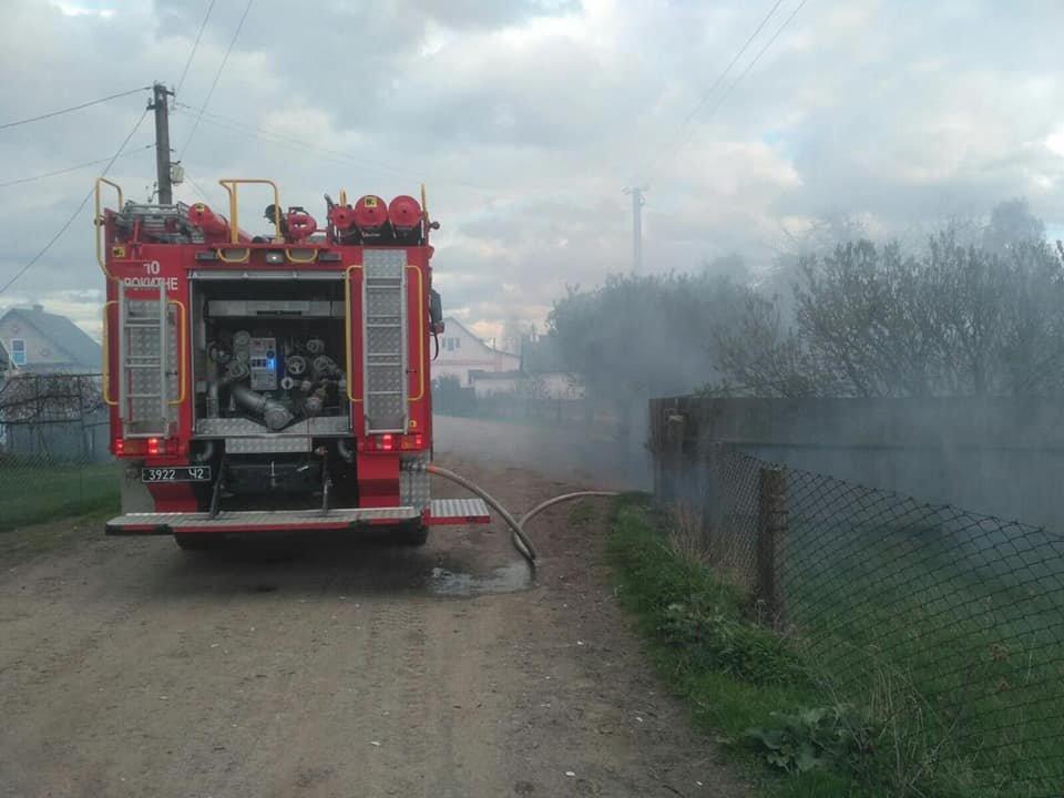 Залишилися самі пеньки: на Рокитнівщині в місцевих мешканців ущент згорів сарай (ФОТО), фото-2