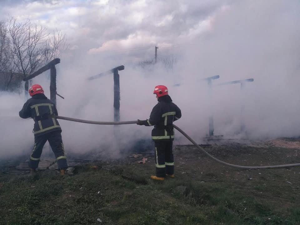 Залишилися самі пеньки: на Рокитнівщині в місцевих мешканців ущент згорів сарай (ФОТО), фото-3