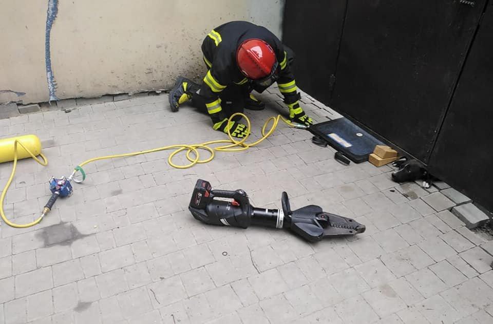 У Рівному пес застряг під металевою огорожею: діставали чотирилапого рятувальники, фото-4
