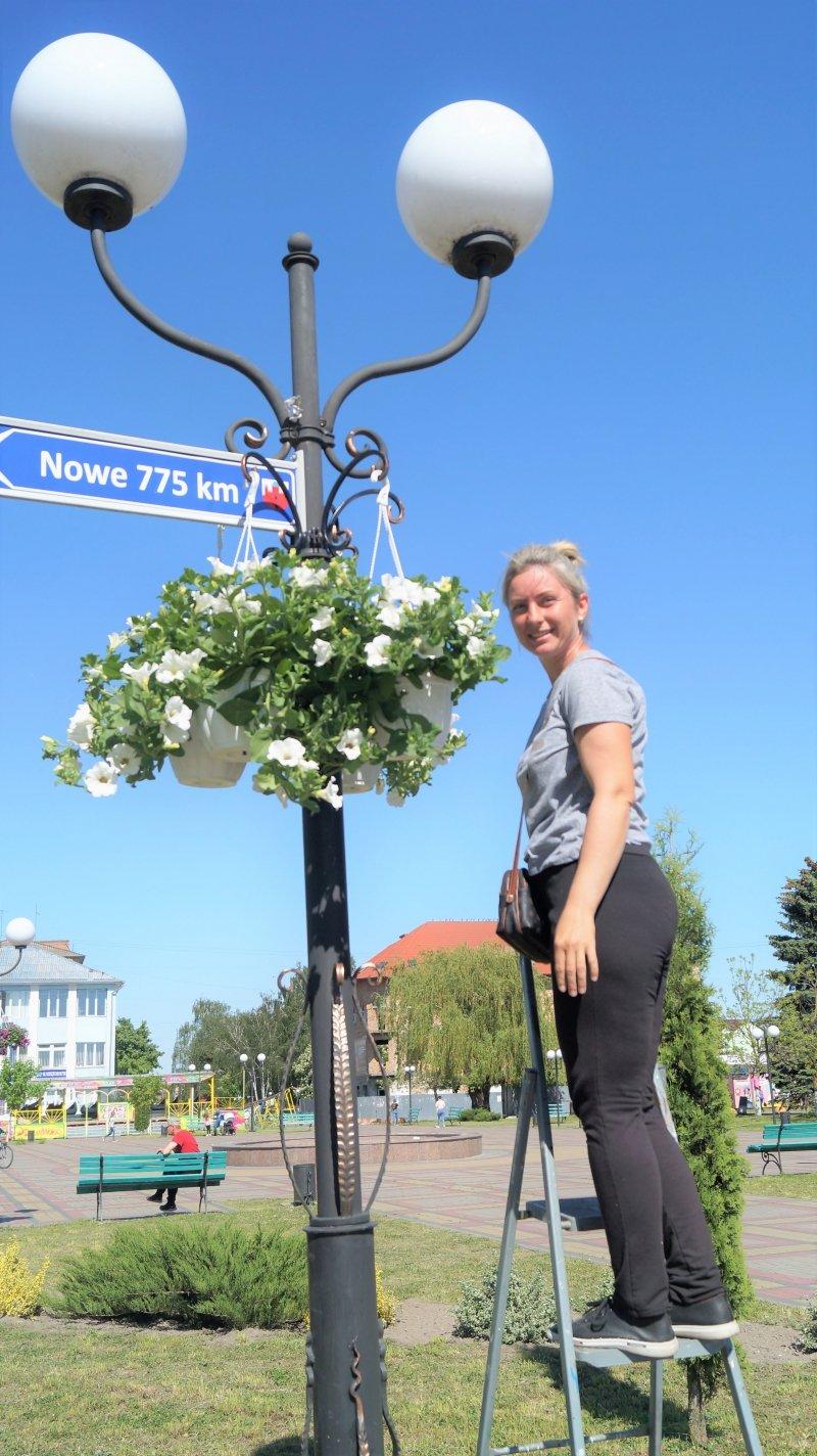 До дня міста Радивилів прикрасили квітами (ФОТО), фото-10