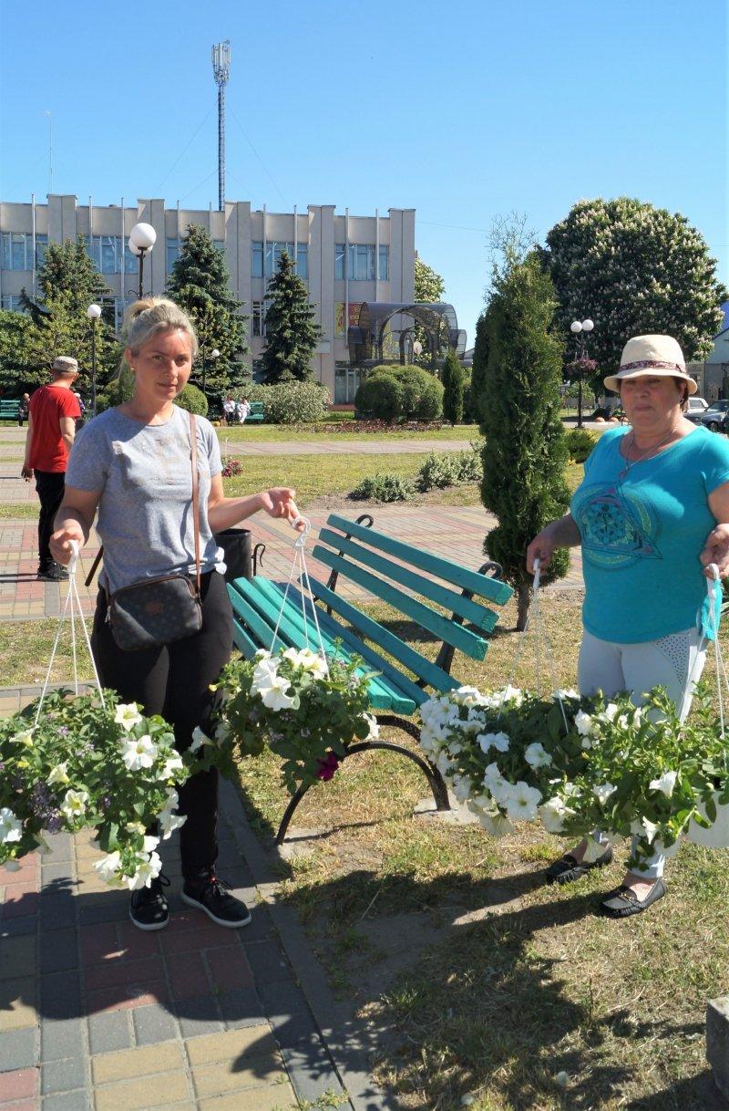 До дня міста Радивилів прикрасили квітами (ФОТО), фото-4